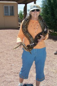 picture with python